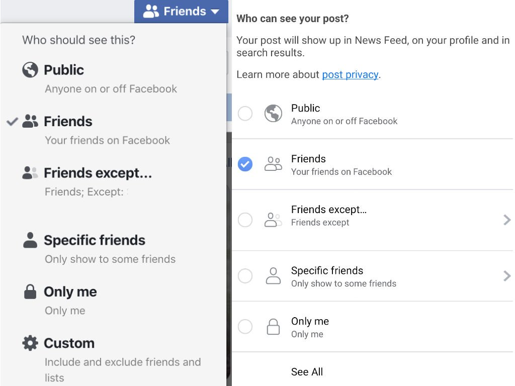 Facebook Audience has a variety of privacy settings